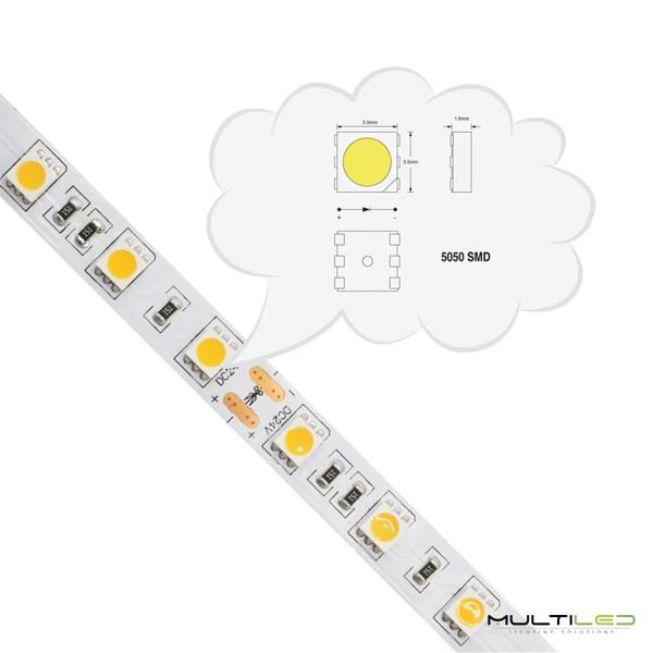 Sensor de temperatura y humedad Wifi Inteligente para sistemas domoticos Orvibo